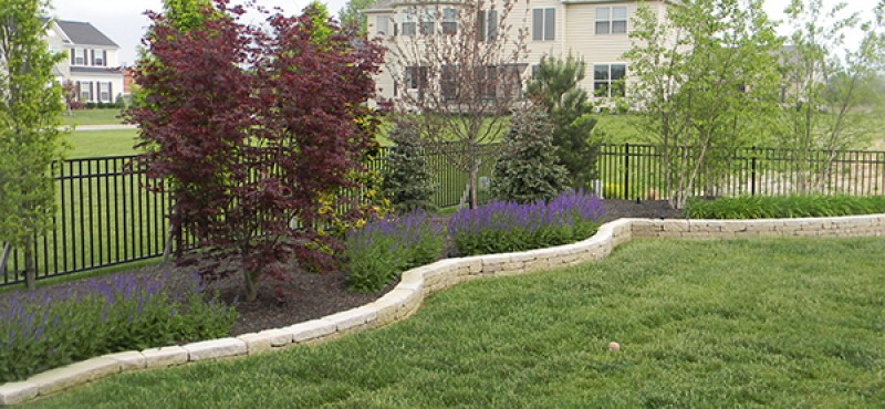 To do list for your landscape