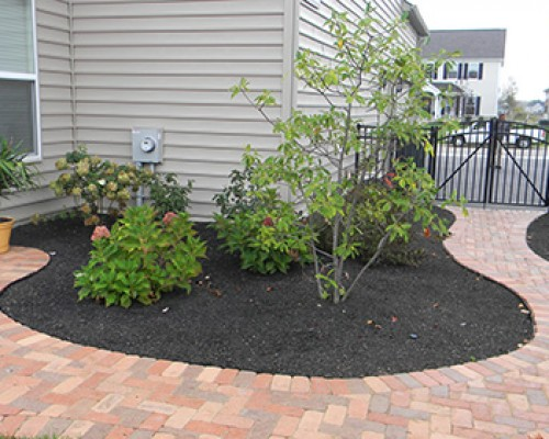 Paver Sidewalk and Landscaping
