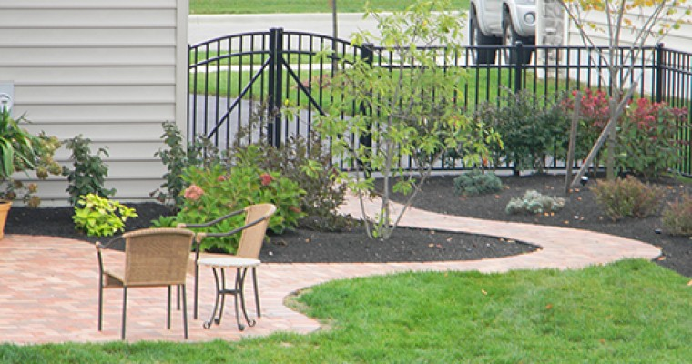 Sculpted Paver Patio Around Landscaping